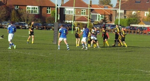Durham Tigers Rugby League Club banner image 2