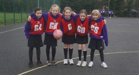 Ashtead All Stars Netball Club banner image 7