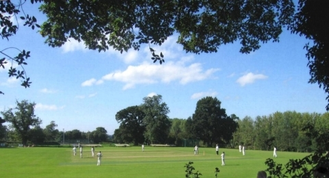 Eccleshall Cricket Club banner image 4