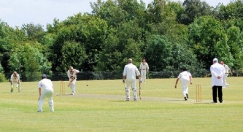 Faringdon & District Cricket Club banner image 1