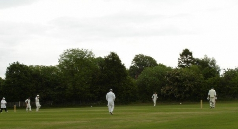 High Lane Cricket Club banner image 2
