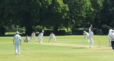 Beddington Cricket Club banner image 1