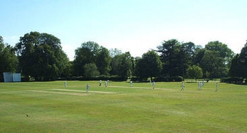 Beddington Cricket Club banner image 3