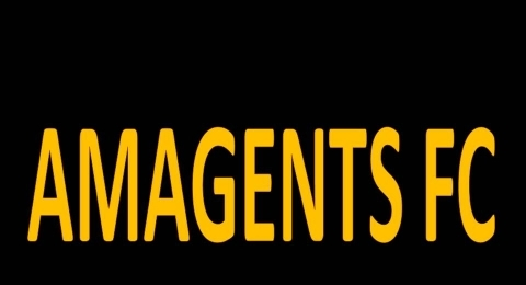Amagents Football Club 2013 banner image 5
