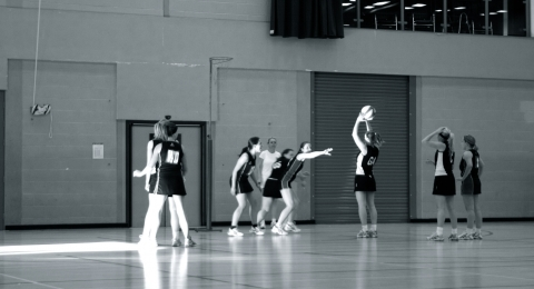 Harlequins Netball Club banner image 5