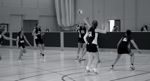 Harlequins Netball Club banner image 4