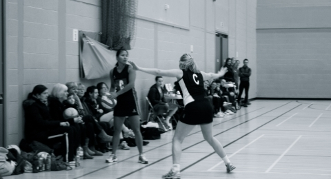 Harlequins Netball Club banner image 2