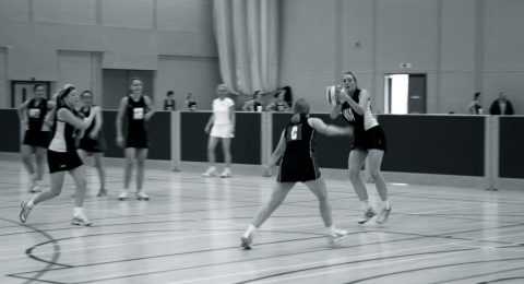Harlequins Netball Club banner image 9