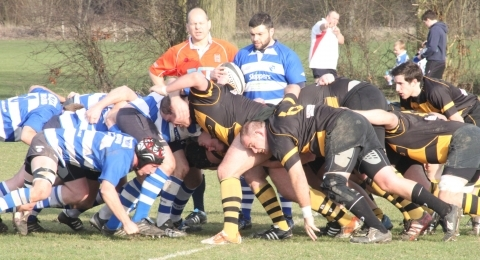 Maldon Rugby Football Club banner image 1