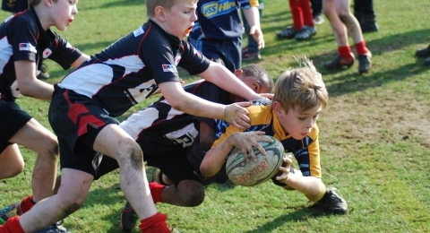 Teddington RFC banner image 6