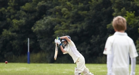 Roehampton Cricket Club banner image 4