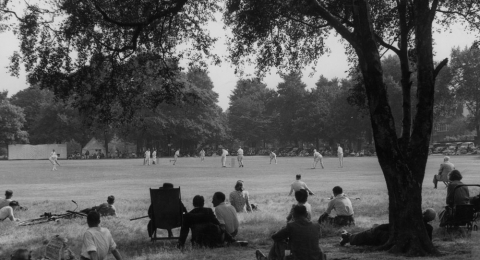 Roehampton Cricket Club banner image 3