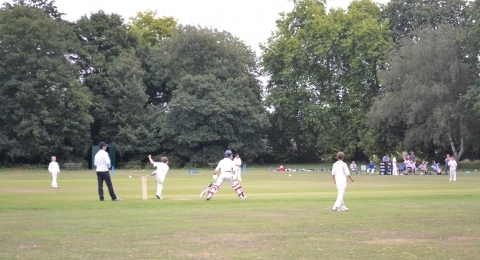 Roehampton Cricket Club banner image 1