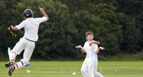 Roehampton Cricket Club banner image 5