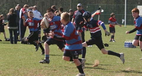 Rotherham Phoenix RUFC banner image 10