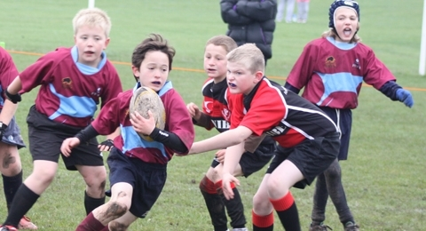 Rotherham Phoenix RUFC banner image 9