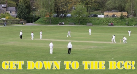 Bollington Cricket Club banner image 9