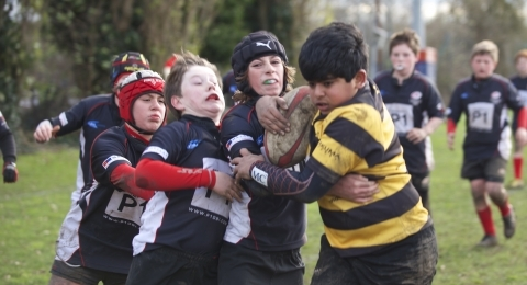 Wasps FC. Rugby in West london. banner image 1
