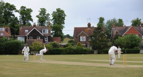 Rudgwick Cricket Club banner image 1