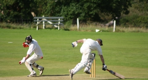 Frankton Cricket Club banner image 10