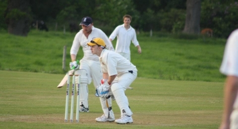 Frankton Cricket Club banner image 4