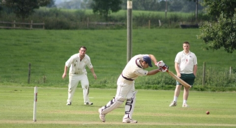 Frankton Cricket Club banner image 2