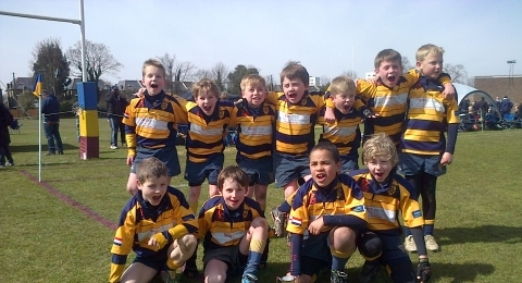 Sevenoaks Rugby Club banner image 1
