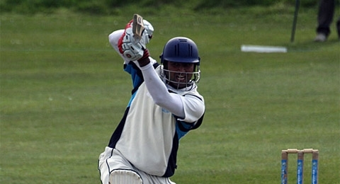 Drumpellier Cricket Club banner image 1