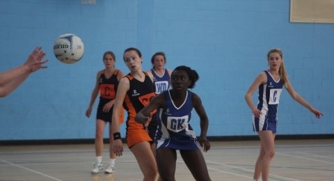 Norfolk United netball club banner image 10