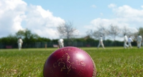 South Yorkshire Cricket League banner image 2
