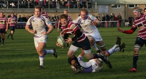 Shelford Rugby Club....founded 1933 banner image 7