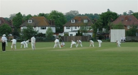 Old Wimbledonians Cricket Club banner image 2