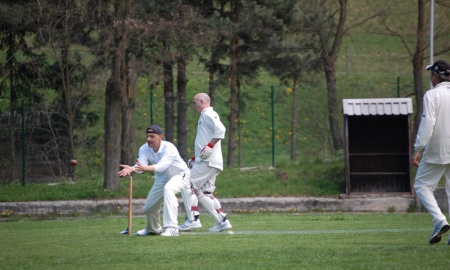 Morton Cricket Club banner image 5
