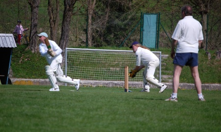 Morton Cricket Club banner image 6