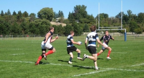 Waterloo County Rugby Club banner image 5