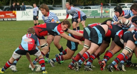 Belfast Harlequins RFC banner image 1