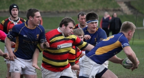 Alnwick Rugby Football Club banner image 9