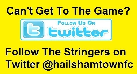 Hailsham Town FC banner image 1