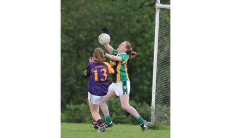 Tara Gaelic Football Club banner image 1