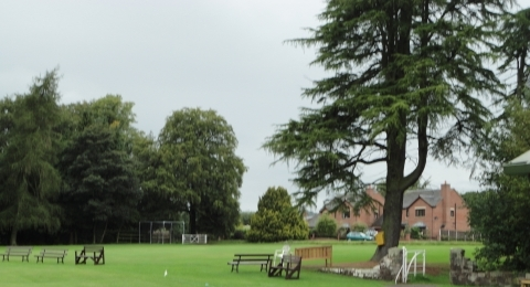Leek Cricket Club banner image 9