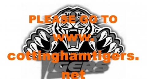 Cottingham Tigers Under 13's banner image 1