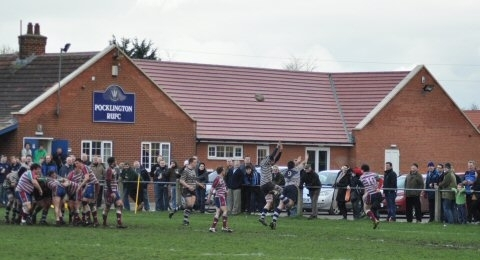 Pocklington RUFC banner image 3