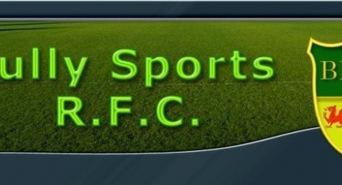 Sully Sports RFC banner image 5
