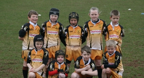Marsh Hornets ARLFC banner image 2