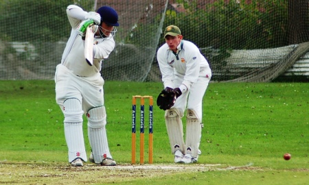 Blackwood Town Cricket Club banner image 3