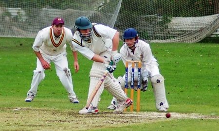 Blackwood Town Cricket Club banner image 7