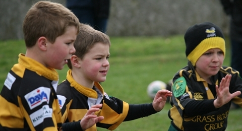 TringRugby banner image 3