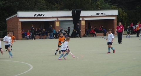 St Neots Hockey Club banner image 9