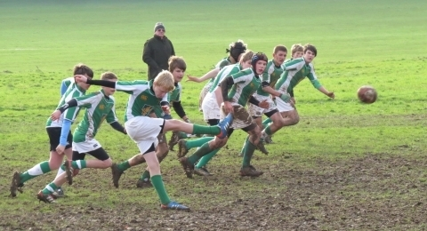 Horsham Rugby Club banner image 3