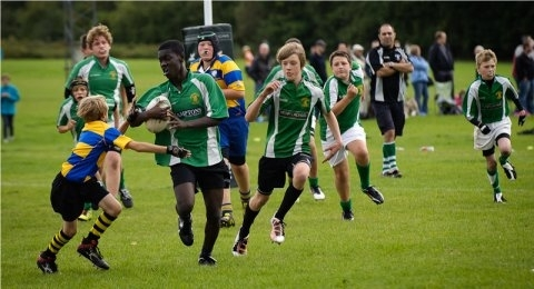 Horsham Rugby Club banner image 7